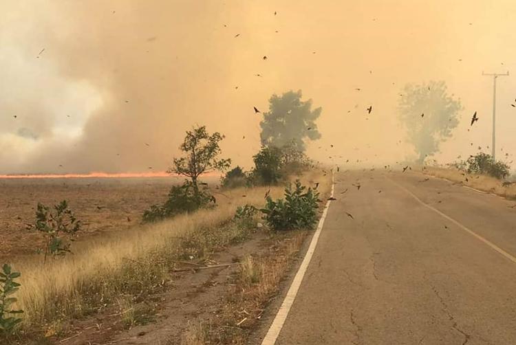 รายงานจากวิเชียรบุรี...คนบ่นก็บ่นไป คนเผาก็เผาไป