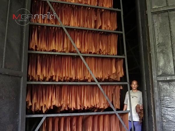 ชาวสวนยางเมืองคอนพร้อมร่วมชุมนุม ชี้สหกรณ์รับซื้อน้ำยางทยอยปิดหลังราคาผันผวนหนัก
