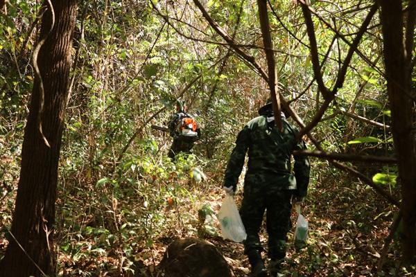 ทหารลาดตระเวนเร่งทำแนวไฟป่าหลังลามไปหลายร้อยไร่