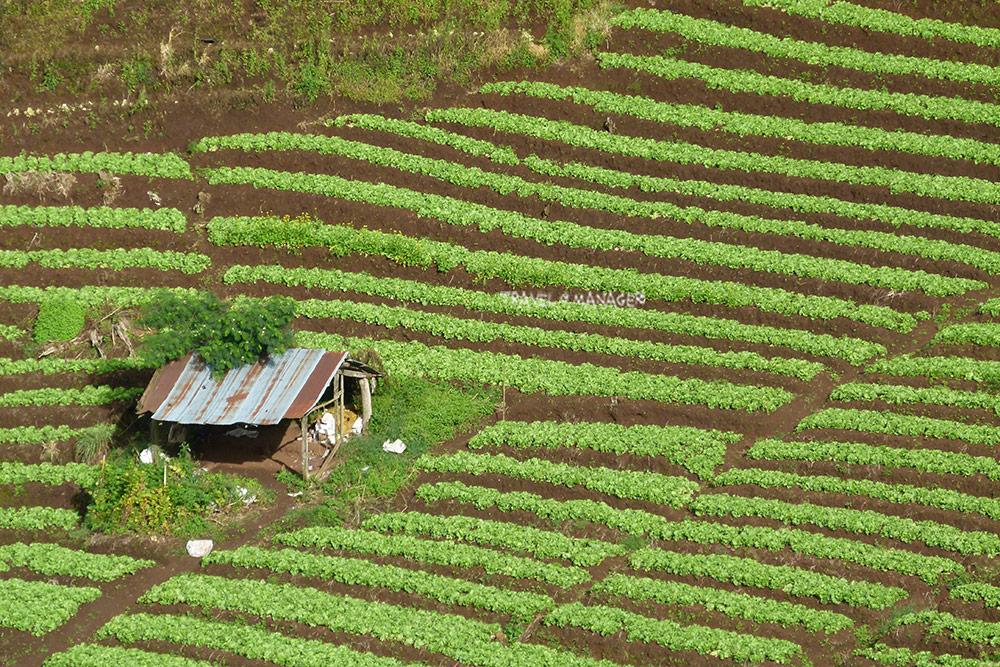 ชาวบ้านหลายคนละวิถีเกษตรหันมาทำด้านท่องเที่ยวแทน