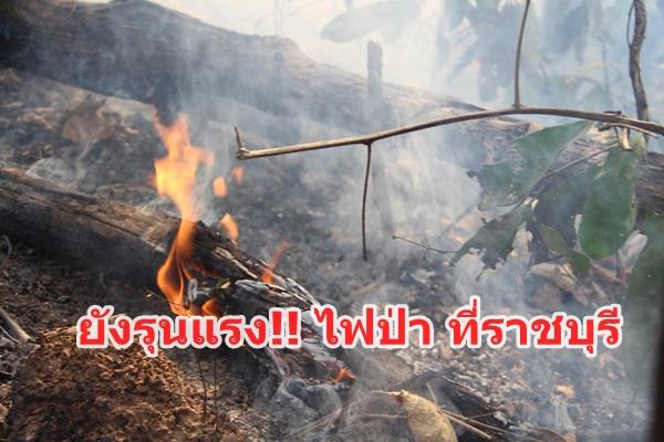 หมอกควันปกคลุม 4 อำเภอ เจ้าหน้าที่สนธิกำลังขึ้นดับไฟป่าพบยังรุนแรง
