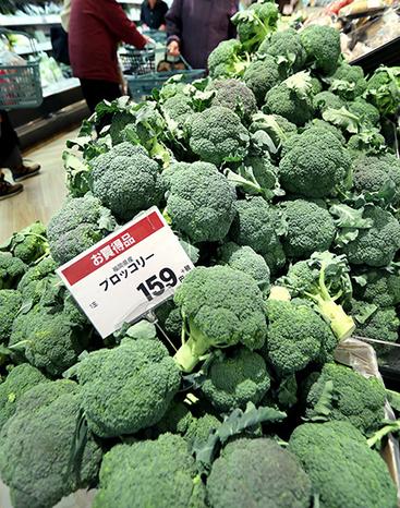 ราคาพืชผักถูกอย่างที่ไม่เคยเป็นมาก่อน