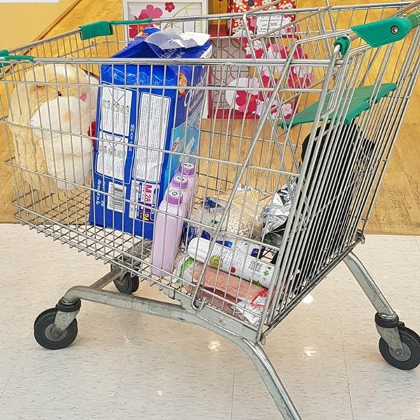 ชอปในห้าง ไม่จำเป็นต้องใช้ถุงพลาสติกหูหิ้ว เพราะสามารถเข็นสินค้าไปใส่รถได้เลย