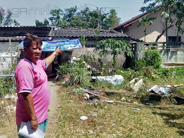 ลมแรงพัดต้นไม้สูง 10 เมตรล้มทับหลังคาบ้านเสียหายที่สตูล