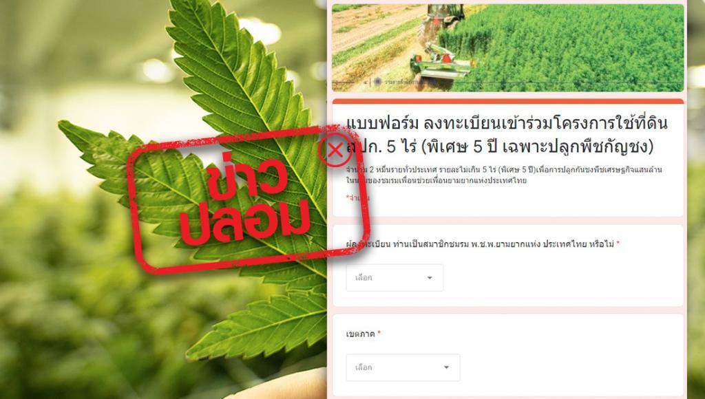 ข่าวปลอม : ลงทะเบียนเข้าร่วมโครงการใช้ที่ดินสปก. 5 ไร่ ปลูกพืชกัญชง