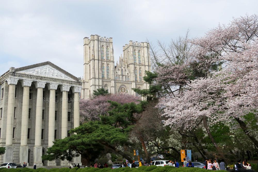 มหาวิทยาลัยคยองฮี โซล