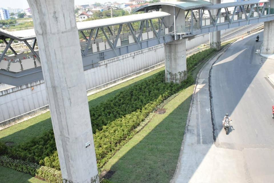 """""""อัศวิน"""" สั่ง ปลูกต้นไม้ดูดซับฝุ่น PM 2.5 เกาะกลางใต้สถานีรถไฟฟ้าสายสีเขียวเหนือ"""