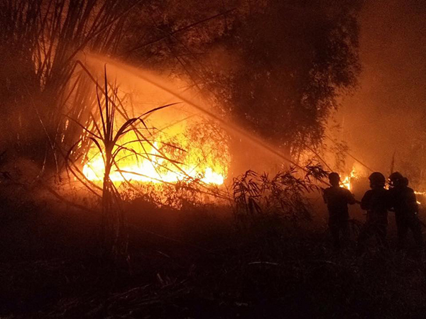 """วอน """"มือเผา"""" หยุดจุดไฟเผาป่าเผาหญ้า ชาวบ้านเดือดร้อน"""