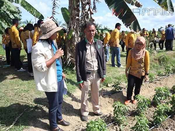 เกษตรจังหวัดปัตตานีเร่งขยายผลเทคโนโลยีระบบน้ำ เพิ่มประสิทธิภาพการผลิตพืชฤดูแล้ง