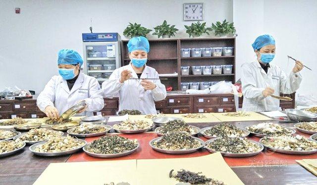 หมอยาแผนจีนกำลังจัดยาประเภทต่างๆตามสูตร (ภาพจาก Tiantai news)