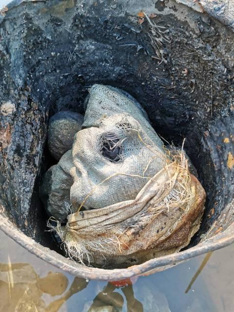 สแกนพื้นที่ไร้คนหาย-คาดคนจาก ปท.เพื่อนบ้าน ถูกฆ่ายัดถังทิ้งหนองน้ำชายแดนบ้านเทอดไทย
