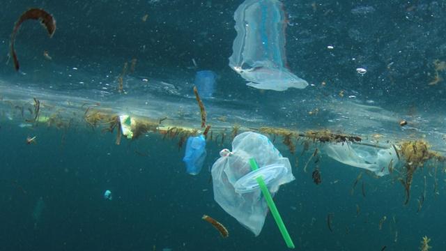 'แก้ขยะพลาสติกแบบบางในทะเล' ความจริงที่โลกต้องทบทวนผ่านการบริหารขยะแบบ  5 Rs