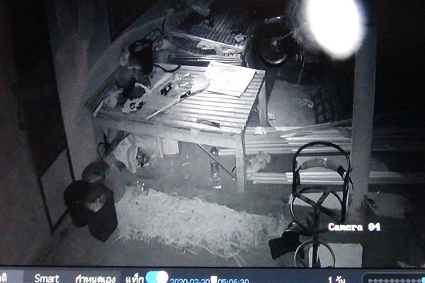 ชาวบ้านกระบี่สงสัยไข่ไก่หายไปไหน? ติดตั้งกล้องวงจรปิด พบแสงไฟประหลาด เชื่อเป็นผีกระสือ ผู้เชี่ยวชาญระบุอาจเป็นแมลงผ่านหน้ากล้อง