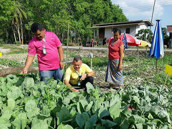 กรมส่งเสริมการเกษตร เดินหน้าสนับสนุนเกษตรแปลงใหญ่