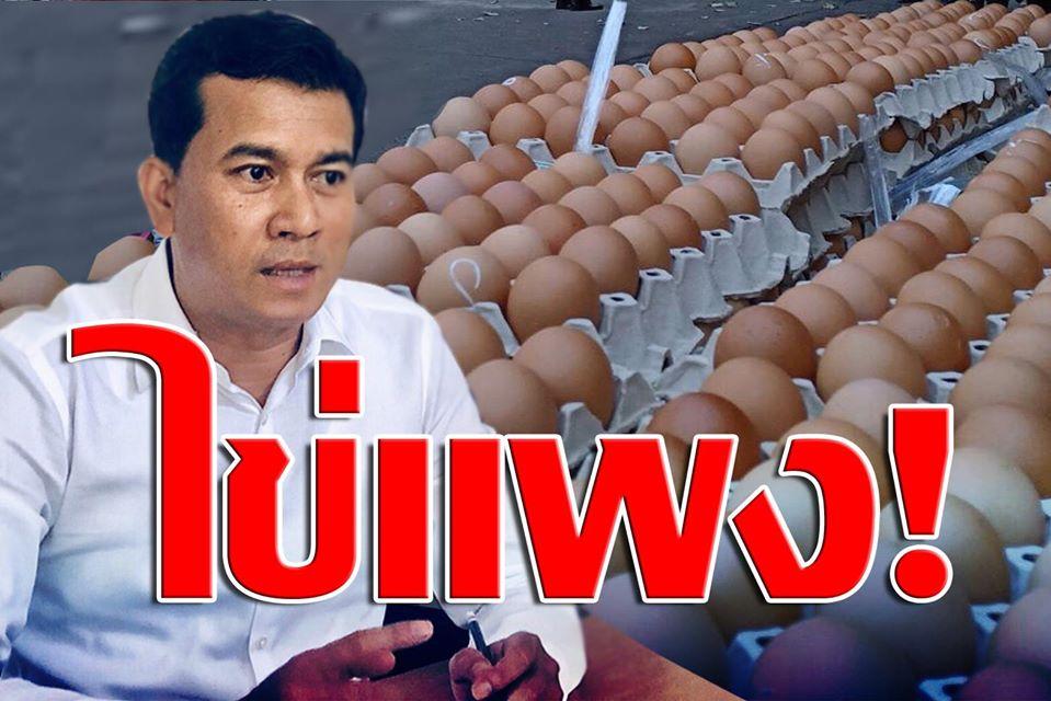 """""""เชาว์"""" เตือนคนไทย เตรียมซื้อไข่ไก่ราคาแพง หลังได้ข่าววงในเตรียมขึ้นราคาแผงละ 6 บาท สัปดาห์หน้า"""