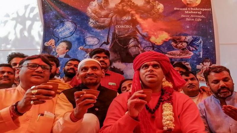 ปาร์ตี้ฉี่วัว ประเทศอินเดีย