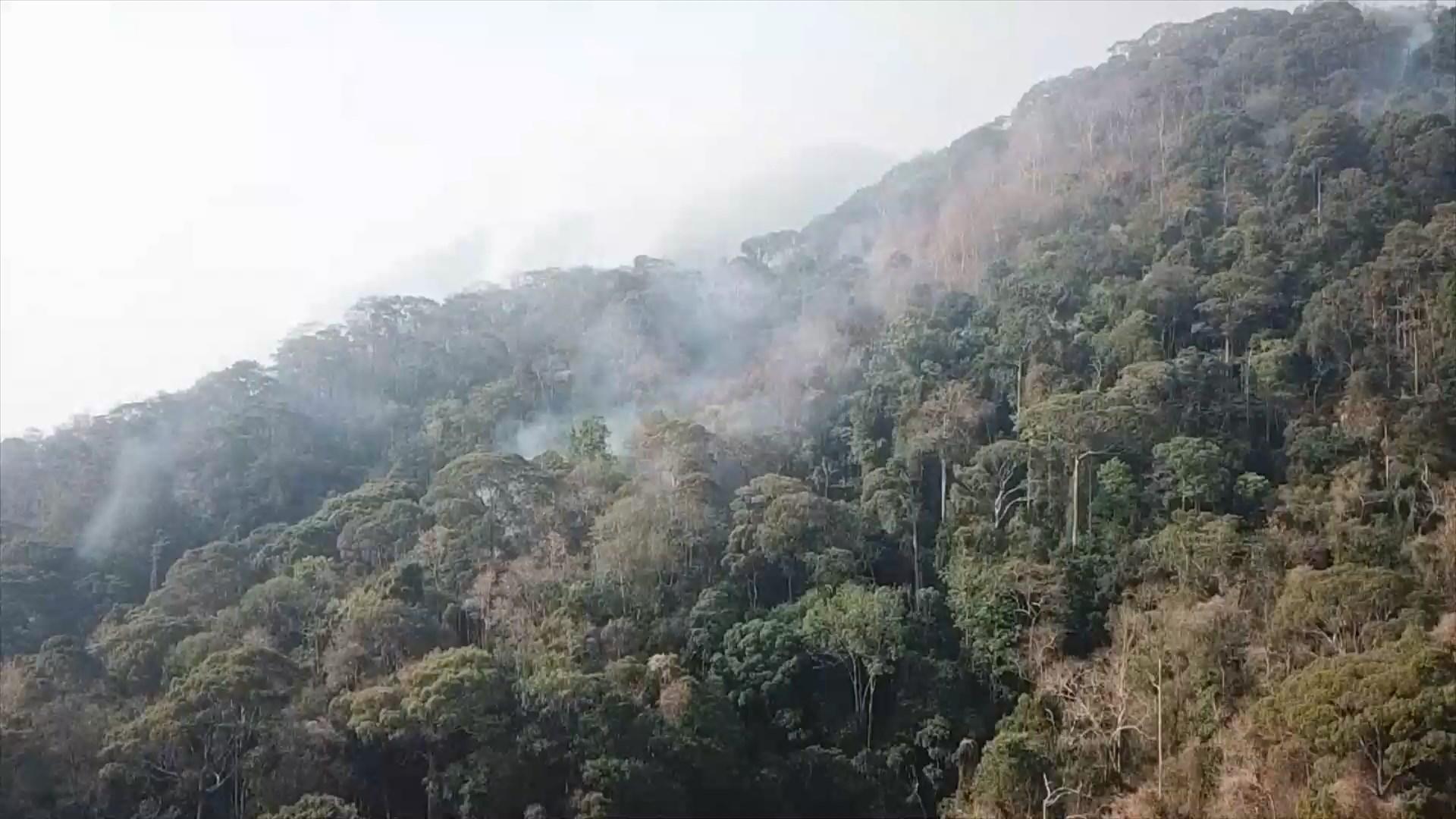 ไฟปะทุไหม้ซ้ำป่าดอยสุเทพหลังน้ำตกมณฑาธาร หลังวานนี้ดับแล้ว