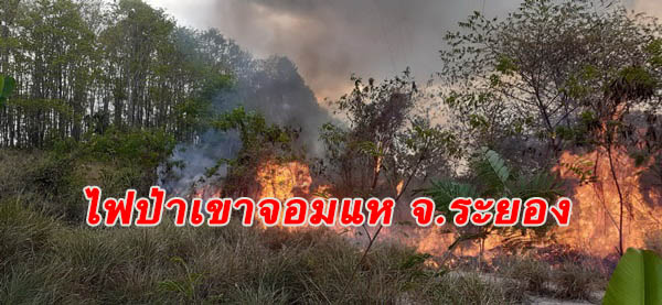 ไฟไหม้ป่าเขาจอมแห 2 วันทำเสียหาย 600 ไร่ ชาวบ้านจี้ รมว.ทรัพย์ฯ สั่งลูกน้องทำงาน