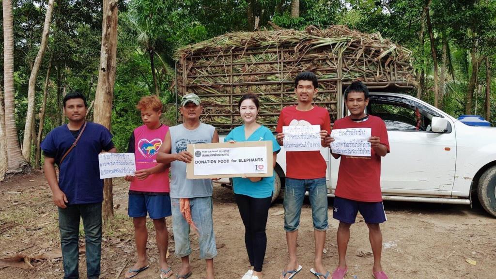 คนเลี้ยงช้างทั่วไทยร้อนใจ!จี้สอบคนชูภาพช้างพังผอมโซขอบริจาคช่วยช้างฝ่าวิกฤตโควิด