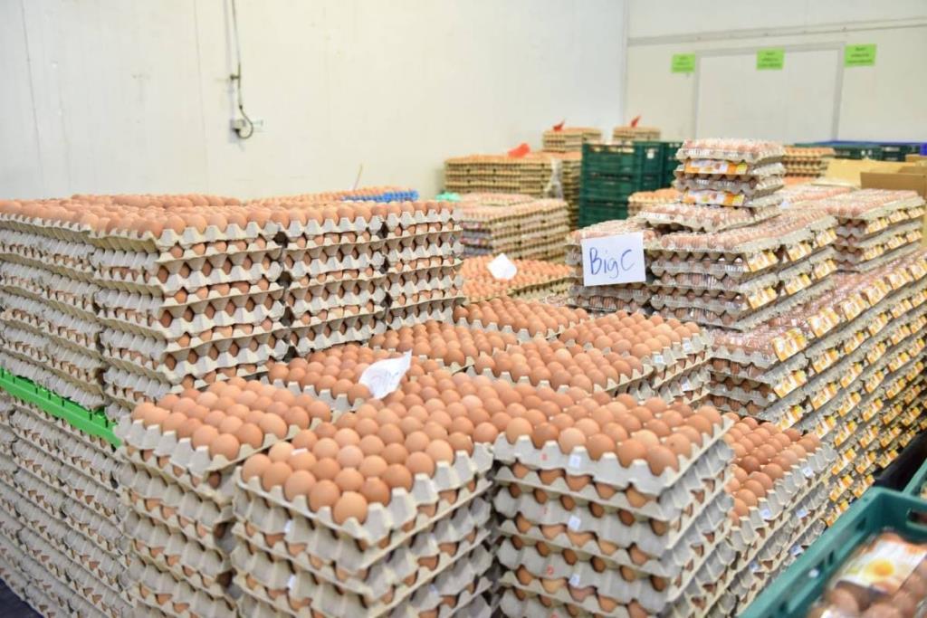 """""""พาณิชย์"""" เผยสถานการณ์ไข่ไก่กลับเป็นปกติ หน้าฟาร์มประกาศลดราคา ทำราคาปลายทางลงตาม"""