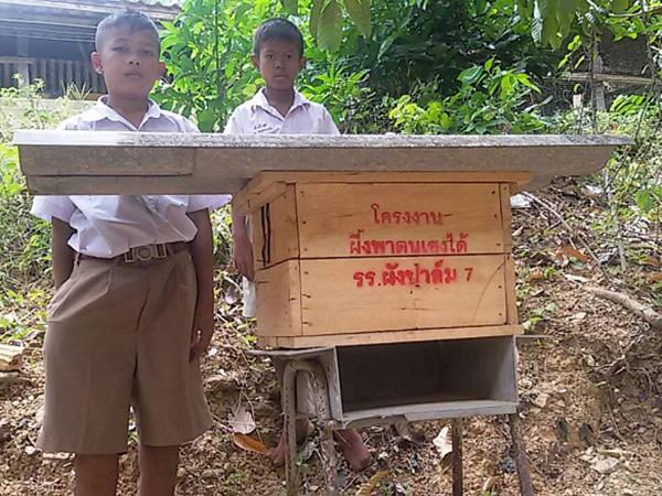 """""""ผึ้งพาตนเองได้"""" โรงเรียนผังปาล์ม 7 สตูล ฝึกนักเรียนเลี้ยงผึ้งต่อยอดอาชีพในอนาคต"""