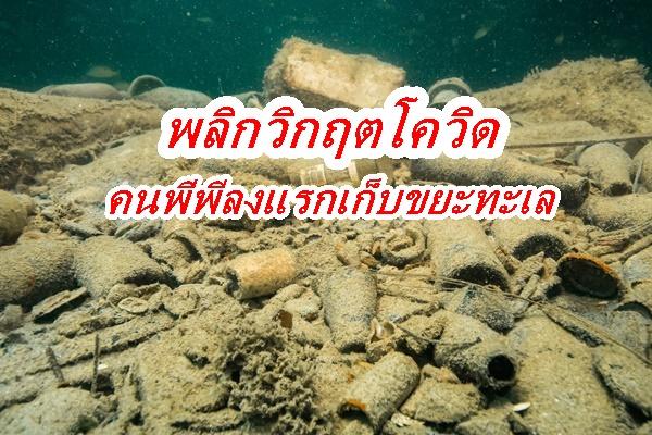 ชาวเกาะพีพี สวนวิกฤติโควิด ลงแรงดำนำเก็บขยะในทะเล