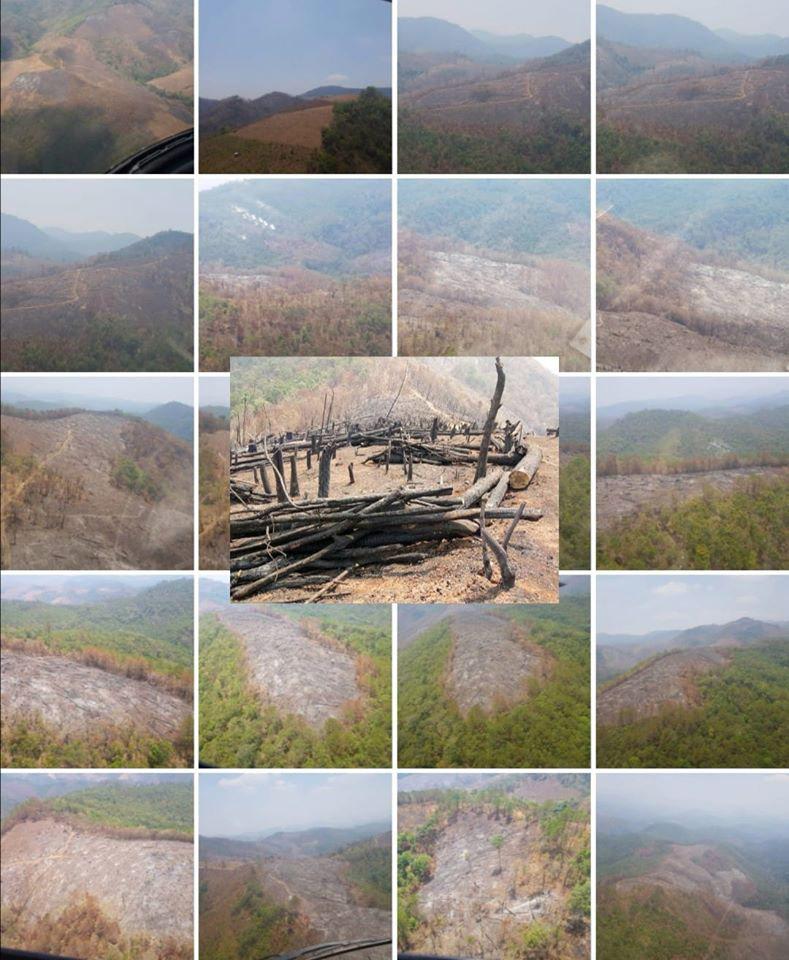 ภาพเขาหัวโล้น กับผืนป่าที่ถูกเผาโค่นตัดทำลาย (ภาพ เพจ เหยี่ยวไฟ-25 เม.ย.63)