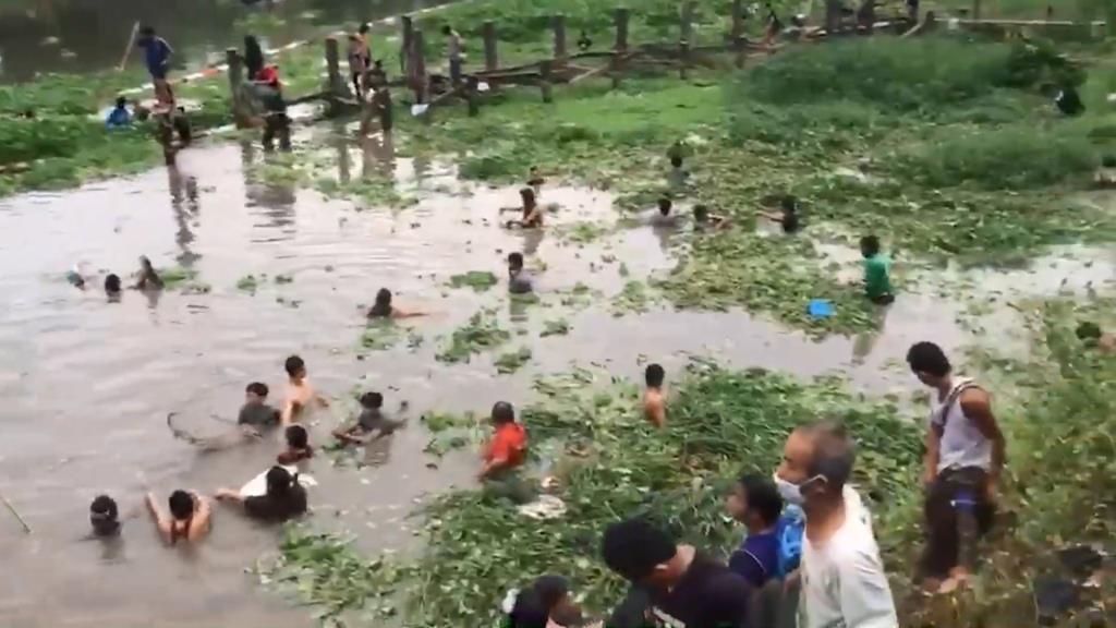 ชาวบ้านแห่จับปลาในแม่น้ำปิงน็อคฝนหนักลอยหายใจนับหมื่น