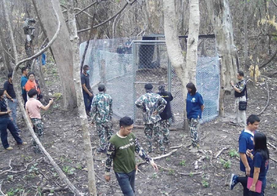 ภารกิจส่งลูกช้างป่าหลงแม่กลับคืนผืนป่าห้วยขาแข้ง (ภาพ : เพจ ประชาสัมพันธ์ กรมอุทยานแห่งชาติ สัตว์ป่า และพันธุ์พืช)