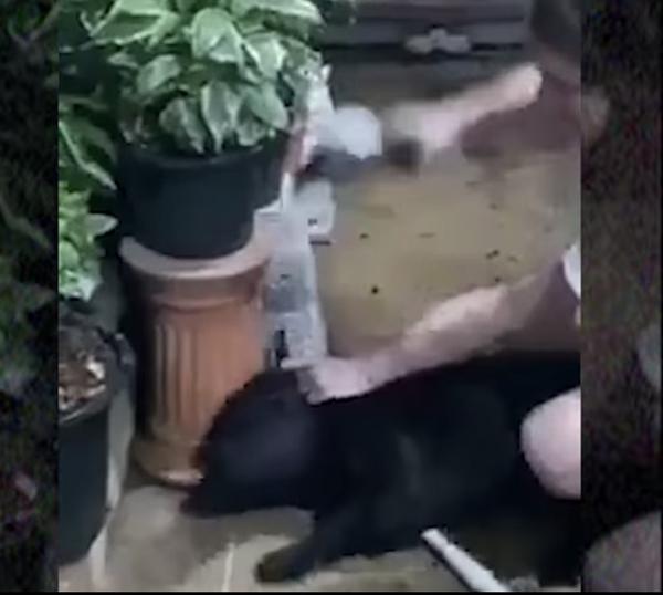 คนรักสัตว์สะเทือนใจ หลังแชร์คลิป ใช้รองเท้าตีปากน้องหมา