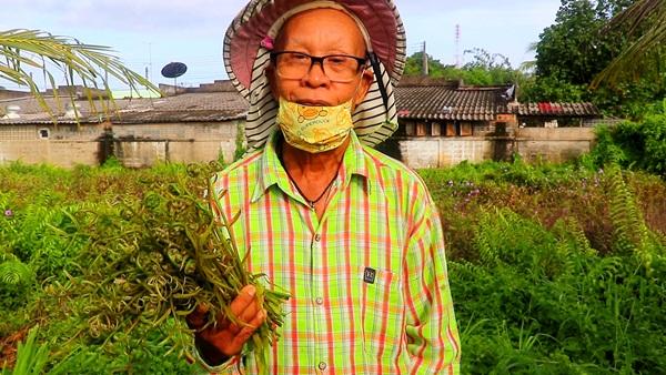 ไม่ง้อของแจก !คุณตาวัย 70 ปีใน จ.ตราด เก็บผักกูดขายสร้างรายได้ช่วงโควิด-19