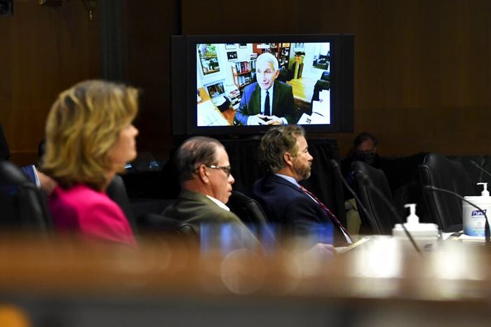 พวกวุฒิสมาชิกรับฟัง นพ.แอนโธนี เฟาซี ขณะที่เขาให้ปากคำผ่านระบบวิดีโอคอนเฟอเรนซ์กับคณะกรรมาธิการสุขภาพ