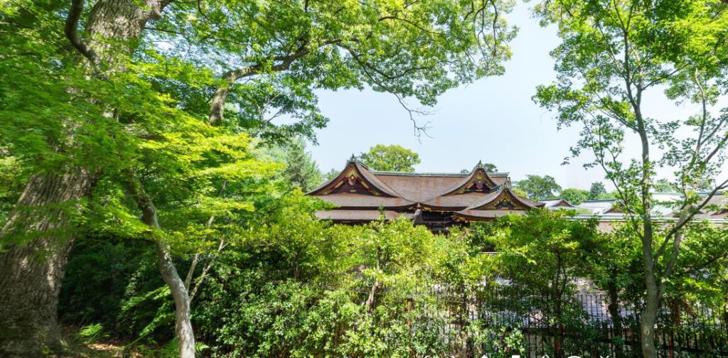 """ชมความงดงามของ """"ศาลเจ้าคิตะโนะ เท็นมังกู"""" ญี่ปุ่น  ผ่าน VR Tour"""