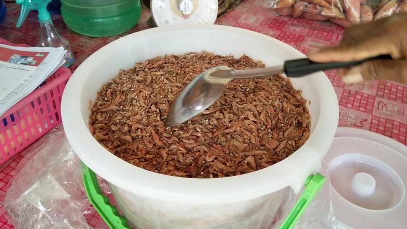 ชาวบ้านที่ขอนแก่นกว่าครึ่งร้อยท้องเสียเข้าโรงหมอ หลังซื้อปลาจ่อมกุ้งจ่อมจากตลาดมากิน