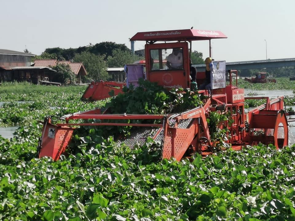 """""""ประวิตร"""" ลงพื้นทีนครปฐม ติดตามปัญหาผักตบชวา-วัชพืช สั่งเร่งกำจัดรับน้ำหลากฤดูฝน"""