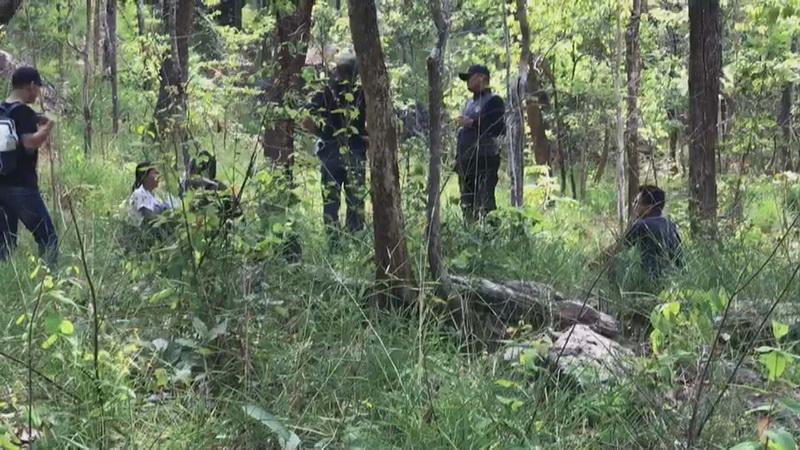 """ตำรวจชุดทำคดี """"น้องชมพู""""ลุยเข้าป่าภูเหล็กไฟซ้ำ หาหลักฐานสางคดี """"น้องชมพู"""""""