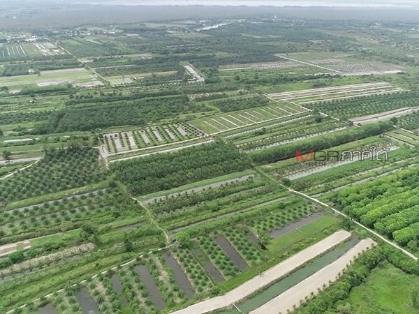 แม่ทัพภาค 4 สั่งตรวจสอบที่ดินกว่า 3 พันไร่ หลังพบมีการบุกรุกทำเกษตรที่พัทลุง