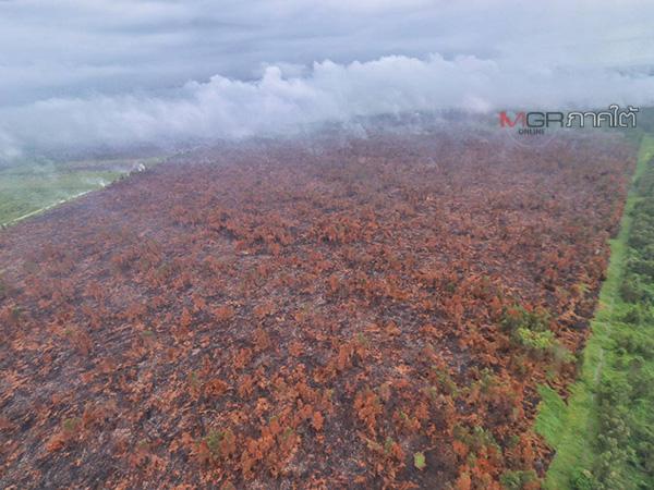 แม่ทัพ 4 ขึ้นบินลุยสำรวจสถานการณ์ไฟไหม้ป่าพรุบาเจาะ หลังเผาวอดแล้วกว่า 100 ไร่