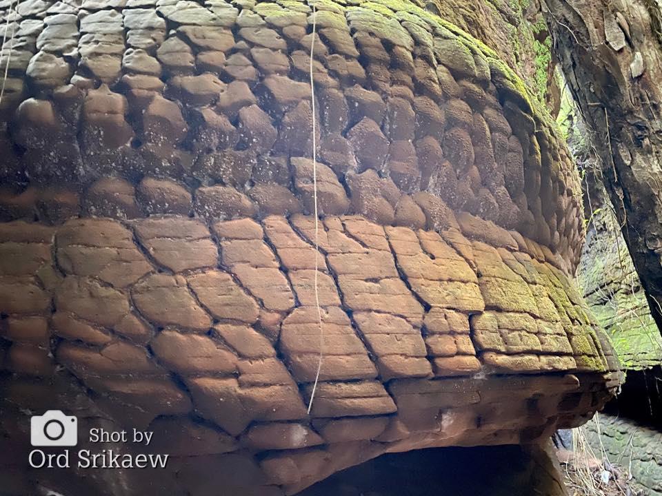 พื้นผิวของหินที่ดูคล้ายเกล็ดงูใหญ่ (ภาพ : ord srikaew)