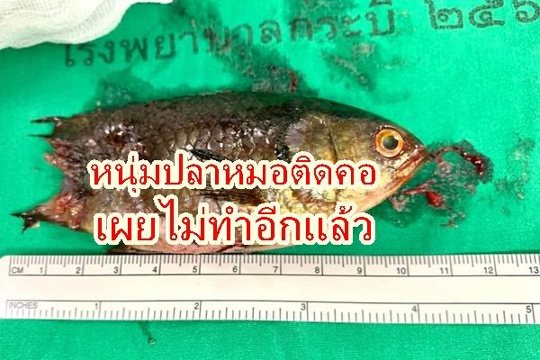 หนุ่มปลาหมอหลุดเข้าคอเปิดใจจะไม่ใช้ปากคาบปลาเป็นอีกแล้ว