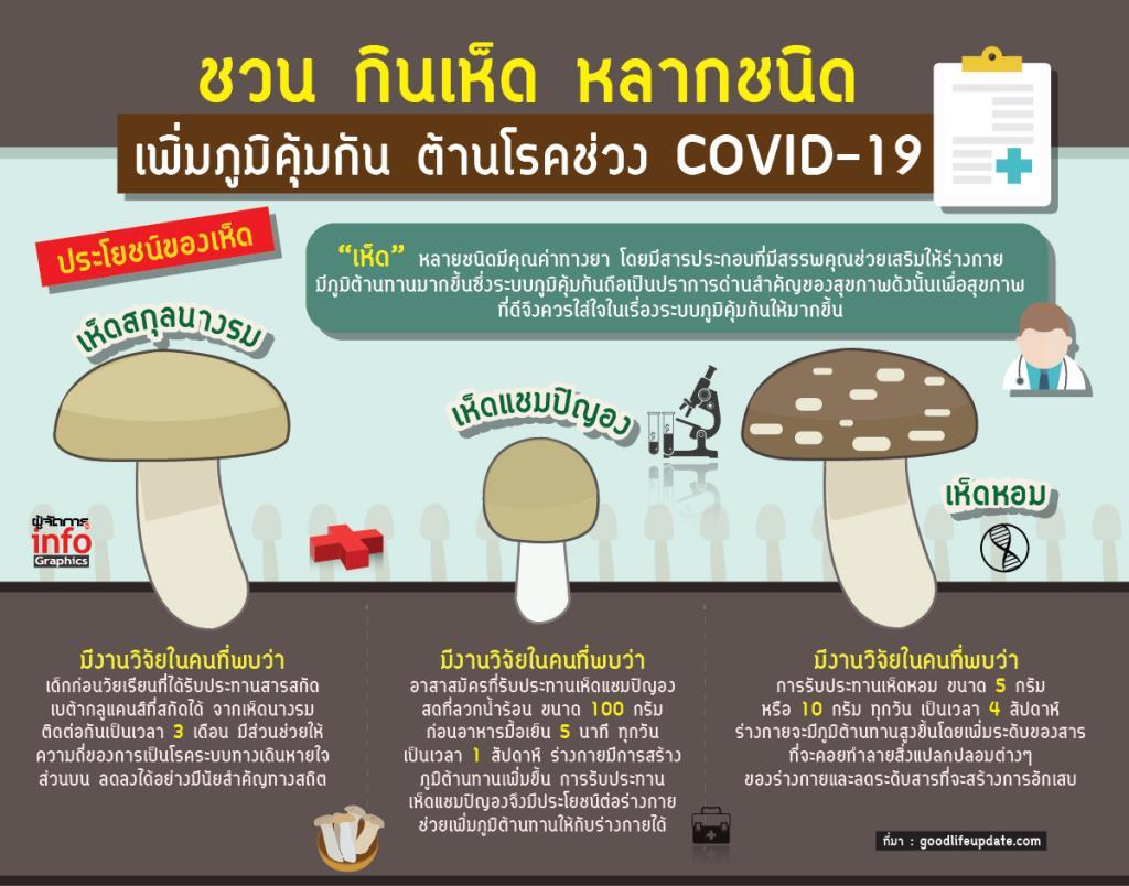 ชวน กินเห็ด หลากชนิด เพิ่มภูมิคุ้มกัน ต้านโรคช่วง COVID-19