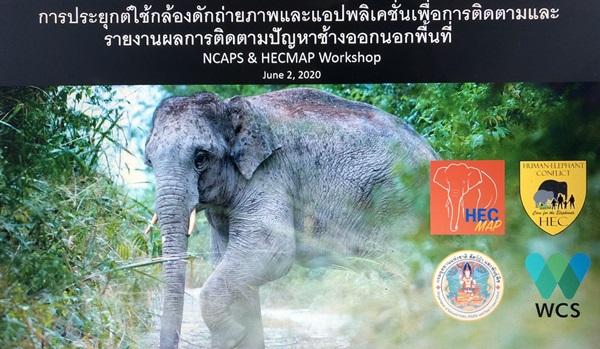 อุทยานฯแก่งกระจานใช้แอปพลิเคชั่นเพื่อแจ้งเหตุ ช้างออกนอกพื้นที่ หวังช่วยป้องกันเหตุ