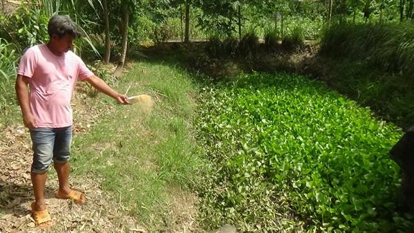 หนุ่ม ป.ตรี เผยเกษตรพอเพียงของพ่อหลวง ช่วยใช้ชีวิตช่วงการแพร่ระบาดโควิด19 ได้อย่างสบาย