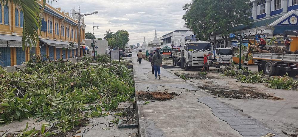 การตัดต้นไม้ปรับปรุงภูมิทัศน์ที่ท่าช้าง ใกล้กับการทำอุโมงค์ทางเดินลอดถนนหน้าพระลาน (ภาพ : จากเพจ Chedha Tingsanchali)