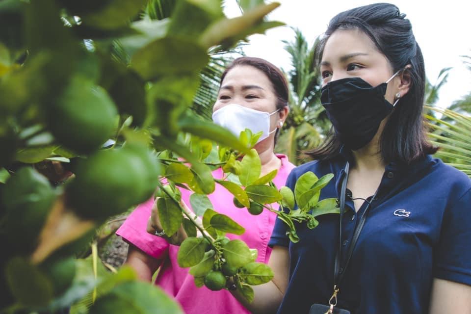 2 สาวพปชร. ลงพื้นที่สมุทรสาครช่วยชาวสวนมะนาว หลังเจอพิษโควิด-19