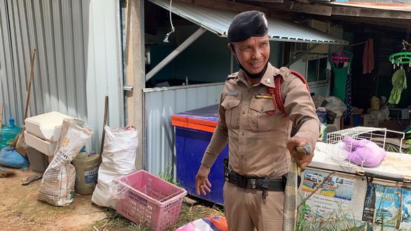ทึ่ง! ตำรวจสภ.สระใคร โชว์จับงูเห่าด้วยมือเปล่าช่วยชาวบ้าน