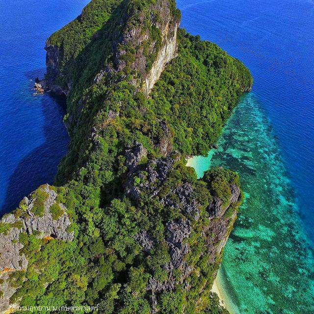 วันทะเลโลก ดร.ธรณ์ ชูเกาะยูง (พีพีโมเดล) จุดพลิกผันของทะเลไทย