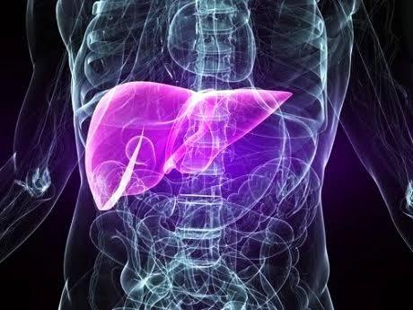 ไวรัสตับอักเสบก่อตับแข็ง-มะเร็งตับ ระวังถ่ายทอดเชื้อสู่ผู้อื่น