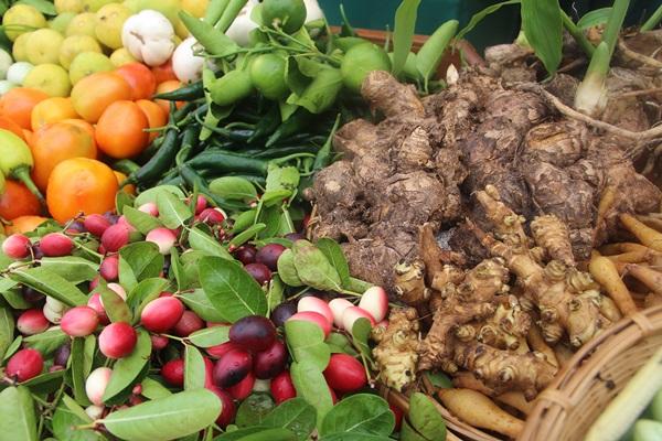 วัดบ้านกุ่ม ราชบุรี เปิดโครงการพุทธเกษตรสู้วิกฤตโควิด -19 ปลูกผักระยะสั้น อนุรักษ์ธรรมชาติ