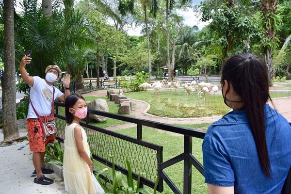 สวนสัตว์เขาเขียวยังเข้ม รับนักท่องเที่ยวเพียง 2,000 คนต่อวัน เน้นจองล่วงหน้าเท่านั้น